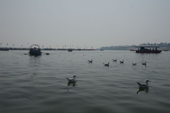 Boating in the Yamuna